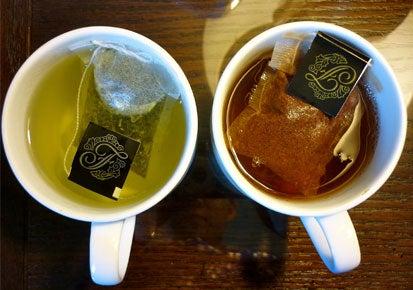 Camellia sinensis: la pianta del tè