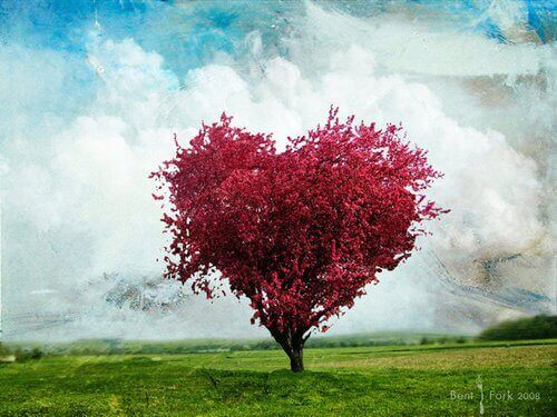 albero rosso a forma di cuore