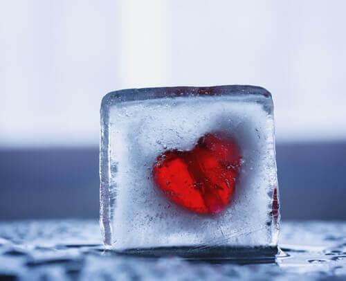 cuore congelato