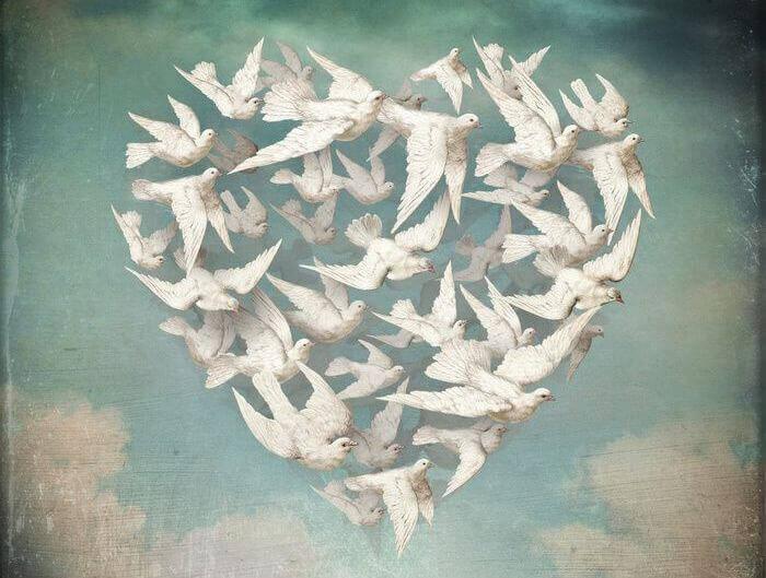 cuore-fatto-di-uccelli