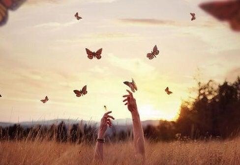 mani sfiorano farfalle nel cielo
