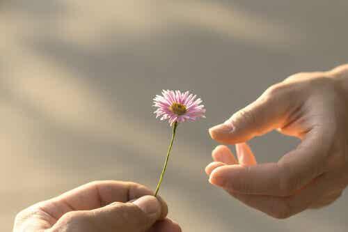 La reciprocità, una delle basi delle nostre relazioni