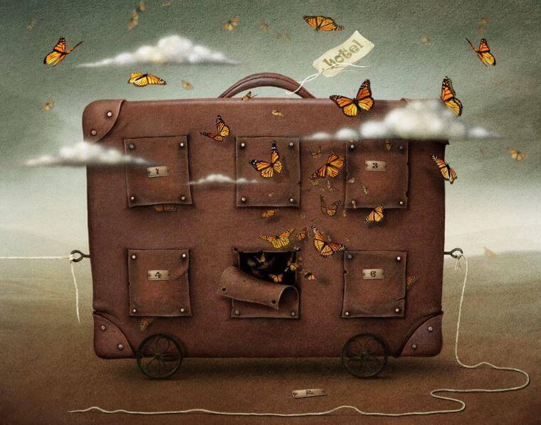 valigia e farfalle