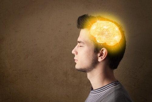Cervello degli adolescenti