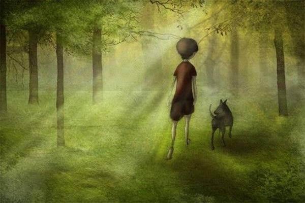 Cane e bambino nel bosco