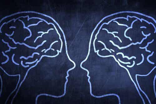 I neuroni specchio e l'empatia