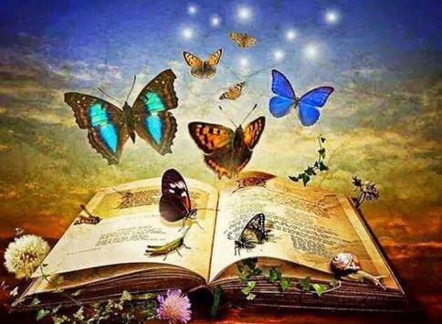 Libro-pieno-di-farfalle