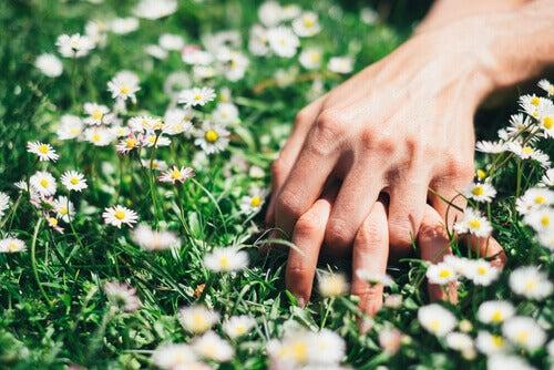 Mani-intrecciate-sull'erba