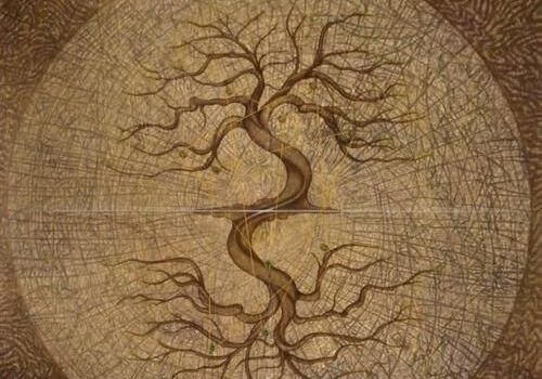 albero con rami