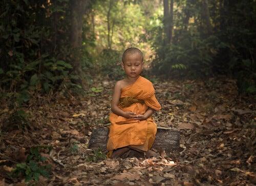 Il monaco e il gelato al cioccolato: un racconto buddista sull'ego