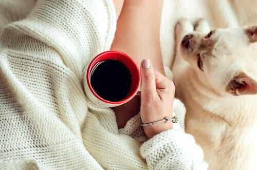 5 strategie per vincere la pigrizia
