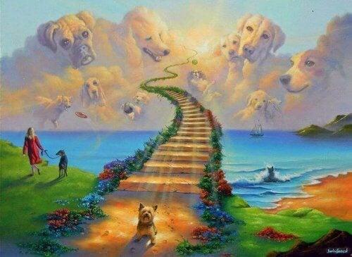 La leggenda del Ponte-Arcobaleno: il paradiso dei nostri animali domestici