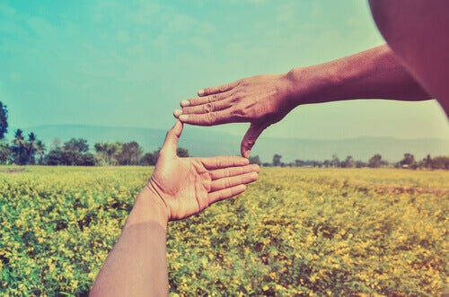 mani in un campo