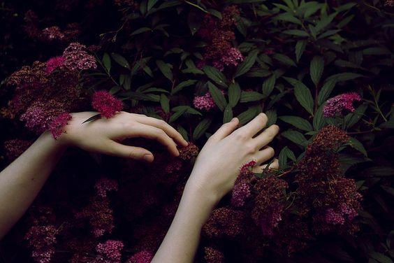 mani-tra-i-fiori-viola