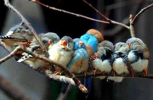 Se la vita vi dà persone meravigliose è perché ve lo meritate