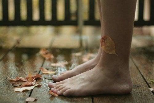 piedi e foglie secche