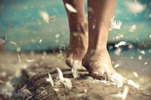 piedi e piume