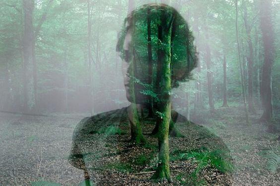 partner-nel-bosco