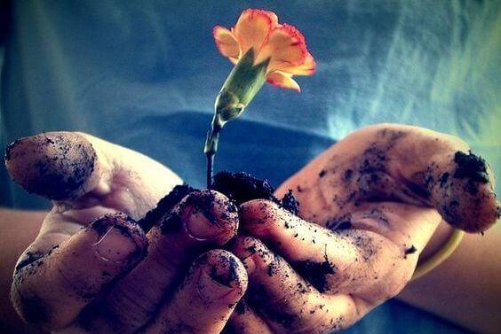 fiore-tra-le-mani-sporche