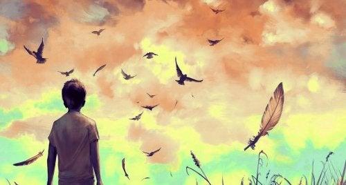 bambino che guarda uccelli in volo
