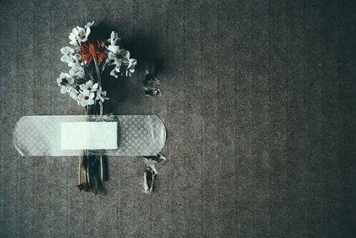 fiori-attaccati-alla-parete-con-un-cerotto