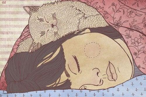 gatto-coccola-padrona