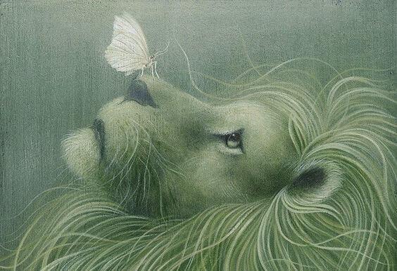 leone-e-farfalla