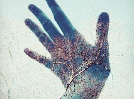 mano-albero