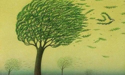 albero-mosso-dal-vento