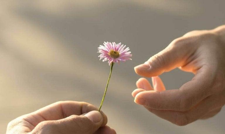 5 prove di maturità di cui l'amore ha bisogno