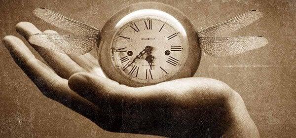 orologio-ali