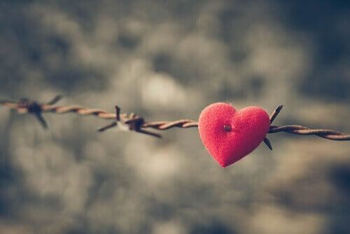 cuore-filo-spinato relazione tossica