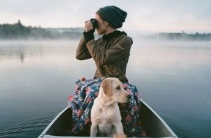 staccare la spina ragazza-con-cane disconnettere