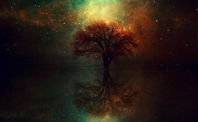 albero-illuminato