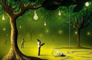 problema lampadine-che-pendono-da-alberi