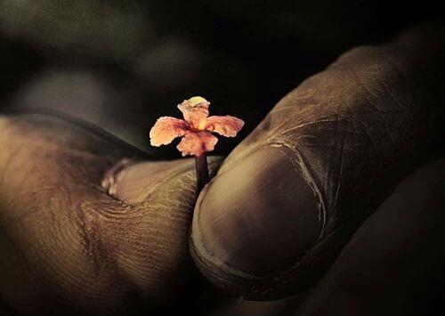 mani-con-fiore