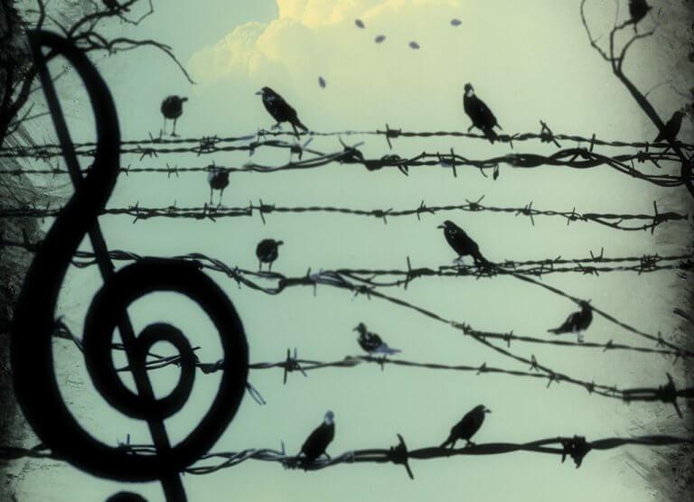 uccelli-e-filo-spinato