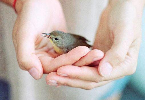 Dare amore agli sconosciuti aiuta a superare la depressione