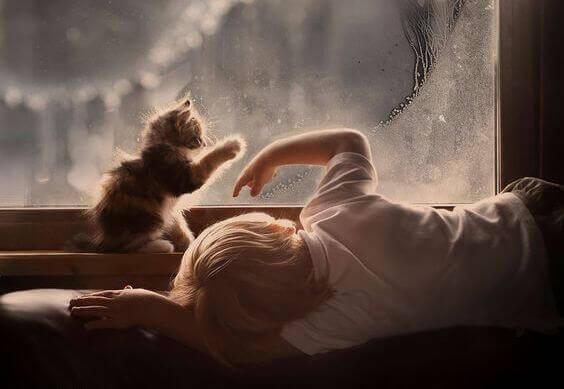 bambino-con-un-gattino