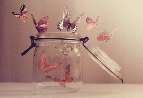 barattolo-con-farfalle