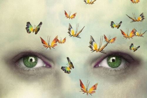occhi-verdi-e-farfalle