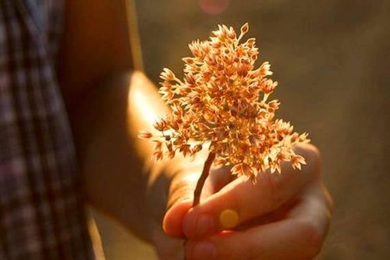 La bontà, senza azioni, non serve a niente
