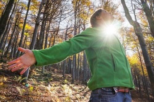 Bagno di foresta: antidoto contro lo stress – La Mente è ...