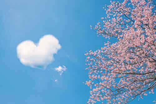 5 proverbi cinesi sull'amore