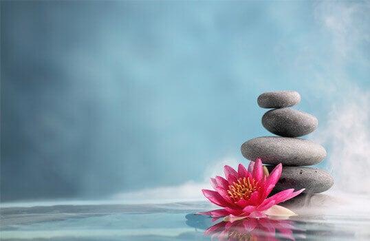 fiore ciottoli mindfulness
