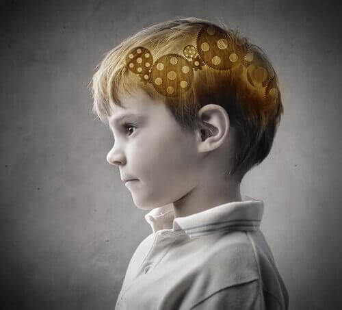 Bambino e cervello