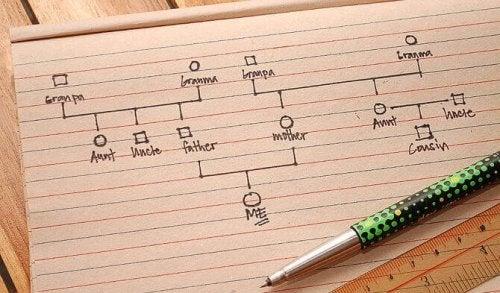 Come elaborare un genogramma passo per passo