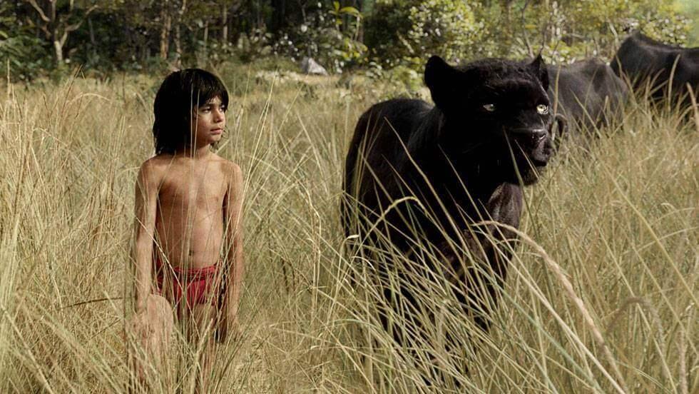 I ragazzi selvaggi e il loro comportamento nella società