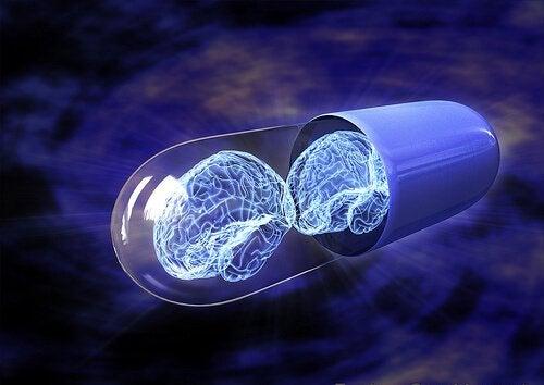 Cosa sono i nootropi e come potenziano la nostra intelligenza?