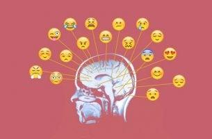 Cervello emoticon elaborare le proprie emozioni